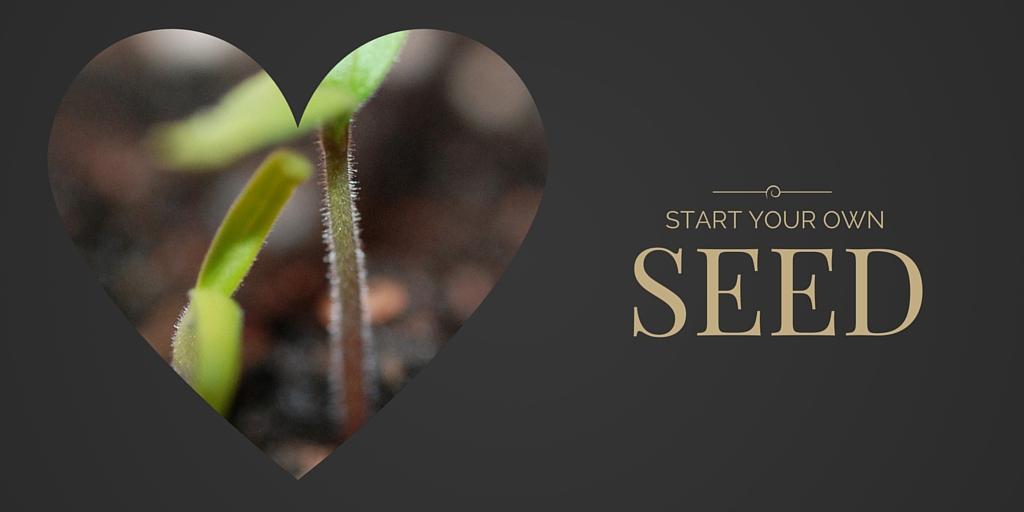 Let's Start Seeds