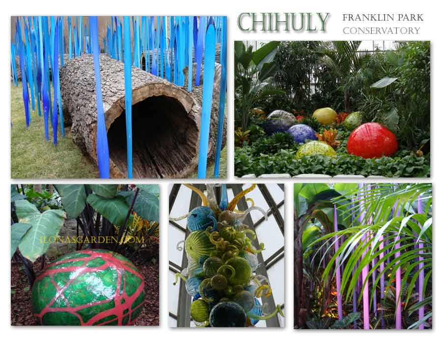 Chihuly Reimagined at Franklin Park Conservatory