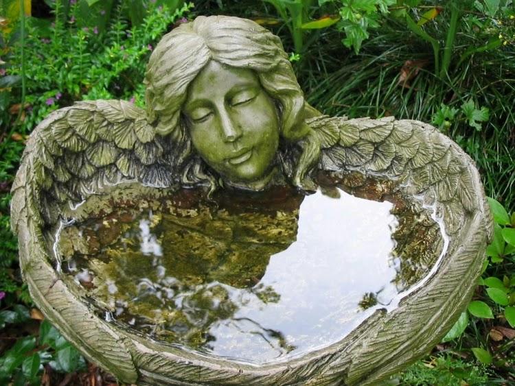 Great Garden Blog Reading