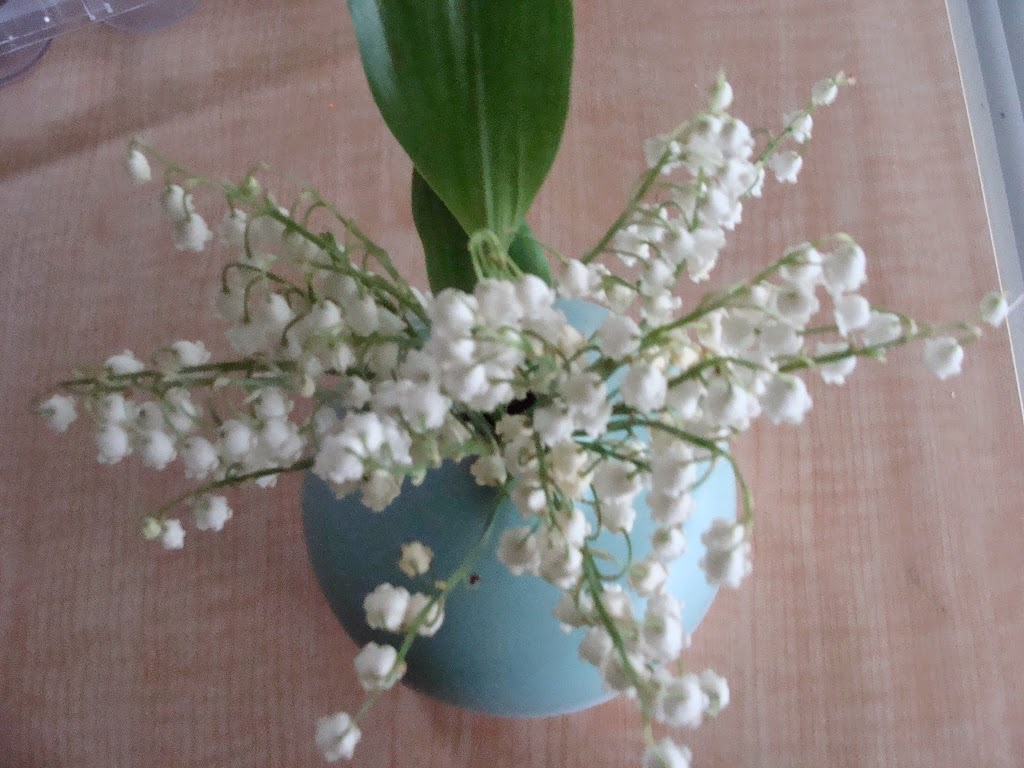 Sweet Scents Of Spring Arrive With The Lily Of The Valley