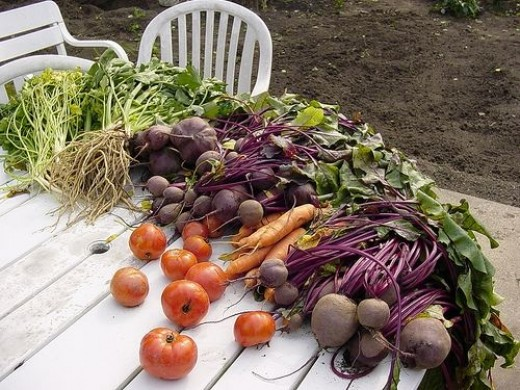 The Plan For Your Own Potager